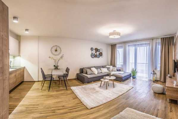 Szekely Bertalan street apartment for rent